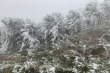 Nhiệt độ Mẫu Sơn xuống 3,2 độ C trong ngày đầu đón rét đậm, rét hại