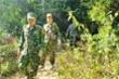Triệu Quân Sự có thể đã rời Hải Vân, nhiều lực lượng công an rút khỏi đèo