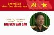 Infographic: Sự nghiệp Chính ủy Quân khu 9 Nguyễn Văn Gấu