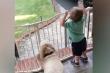 Clip em bé đón bố đi làm về dễ thương không chịu nổi