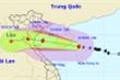 Ngày mai, bão số 7 giật cấp 11 đổ bộ Nam đồng bằng Bắc Bộ và Bắc Trung Bộ