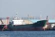 Tàu hàng bị bão Hagibis đánh chìm trên vịnh Tokyo: Thủy thủ Việt Nam được cứu