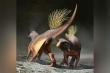 Hóa thạch quý tiết lộ cách khủng long 'xì hơi', giao phối