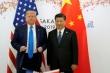 Tổng thống Trump nói chưa có ý định 'trừng phạt' ông Tập Cận Bình