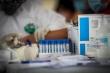 Vì sao bệnh nhân tái nhiễm SARS-CoV-2 sau nhiều tháng khỏi bệnh?