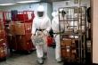 Chất độc ricin được gửi tới Tổng thống Trump nguy hiểm nhường nào?