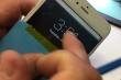 Apple ra giá 149 USD sửa iPhone 6 Plus liệt cảm ứng