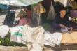 Hà Nội nắng nóng đỉnh điểm, chợ ế ẩm, tiểu thương quay cuồng mưu sinh