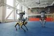 Video: Vũ đoàn robot nhảy múa, uốn lượn điệu nghệ
