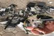 Dừng xe chở hàng cồng kềnh, CSGT phát hiện 19 khẩu súng tự chế có sẵn đạn
