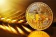 Năm 2025, Bitcoin có thể chạm mốc 100.000 USD