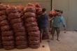 Video: Người dân TP.HCM đổ xô mua khoai lang tím giá 2.000/kg