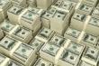 Tỷ giá USD hôm nay 22/1: USD tiếp tục lao dốc, nguy cơ lặp lại đáy