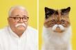 Sửng sốt ngắm loạt chân dung giống nhau kỳ lạ giữa chủ và thú cưng