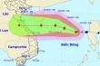 Bão số 8 giật cấp 13 cách quần đảo Hoàng Sa 470km, liên tục mạnh thêm