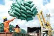Tiếp nhận tờ khai đăng ký xuất khẩu hơn 38.600 tấn gạo từ 0h ngày 26/4