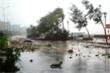Video: Trước giờ bão số 9 đổ bộ, nhiều tỉnh thành mưa rất to