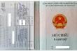 Giám đốc Trung tâm Kiểm soát bệnh tật TP.HCM nói gì về 'hộ chiếu vaccine'?