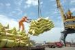 Thủ tướng yêu cầu thanh tra đột xuất xuất khẩu gạo, làm rõ có hay không tiêu cực