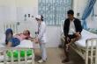 Ăn nấm lạ, 8 người ở Quảng Ngãi bị ngộ độc