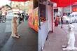 Ảnh chú chó béo thộn mặt chờ ăn trước nhà hàng khiến dân mạng cười lăn