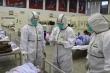 SCMP: Ít nhất 500 nhân viên y tế ở Vũ Hán nhiễm virus corona
