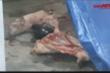 Video: Kinh hãi cảnh lò mổ đưa lợn chết, lợn bệnh lên bàn ăn ở Hà Nội