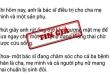 TP.HCM xử phạt 2 người chia sẻ tin giả 'bác sĩ Khoa rút ống thở cứu sản phụ'