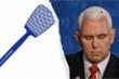 'Ăn theo' con ruồi trong tranh luận Phó Tổng thống, vỉ đập ruồi cháy hàng ở Mỹ