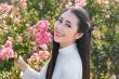 Á khôi Sinh viên Việt Nam khoe vẻ đẹp tinh khôi trong tà áo dài trắng