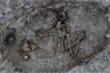 Vật thể bí ẩn trong mộ cổ 4.000 năm