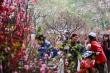 Vì sao không cố định ngày nghỉ Tết Nguyên đán hàng năm?
