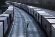 Pháp mở lại biên giới với Anh sau 48 giờ đóng cửa vì biến thể mới của COVID-19