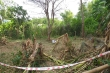 Sau tiếng nổ vang trời, người đàn ông ở Quảng Nam thiệt mạng