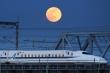 Ảnh: 'Mãn nhãn' ngắm siêu trăng cuối cùng của năm 2020