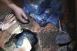 Cảnh sát bắt kẻ chôn hơn 42.000 viên ma túy dưới nền nhà