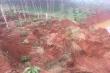 Sạt lở hồ thải quặng đuôi Nhà máy Alumin Nhân Cơ, hàng loạt cây trồng bị chôn vùi