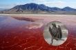 Hồ nước đỏ như máu khiến các sinh vật rơi xuống bị 'hóa đá' như dính lời nguyền