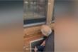 Cảm động tình yêu của vợ chồng già động viên nhau qua tấm kính cửa sổ