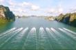 Ngắm cảnh đẹp hùng vĩ Vịnh Hạ Long trên du thuyền sang trọng