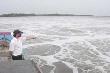 Nông dân Bà Rịa Vũng Tàu đã rút đơn kiện Vedan