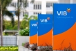 Cổ phiếu ngân hàng VIB tăng chóng mặt, vợ sếp lớn vung trăm tỷ đồng gom mua