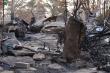Cộng đồng người Việt chung tay hỗ trợ nạn nhân cháy rừng tại Australia
