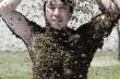 Điều gì xảy ra với cơ thể khi bị 1.000 con ong đốt cùng lúc?