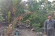 Sắp xử phúc thẩm vụ đền bù 1m2 đất trung tâm Đà Nẵng giá bằng 'cân cá nục'