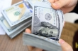 Tỷ giá USD hôm nay 27/11: USD phục hồi nhẹ từ đáy