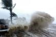 Biển Đông có thể tiếp tục đón bão số 10