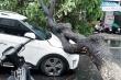 Tàu chìm, cây đổ hàng loạt đè bẹp ô tô trong mưa lớn ở Đà Nẵng