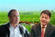 THACO mua 5 triệu cổ phiếu HAGL Agrico