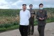 Ông Kim Jong-un hoãn mục tiêu phát triển vì bão liên tục tàn phá Triều Tiên